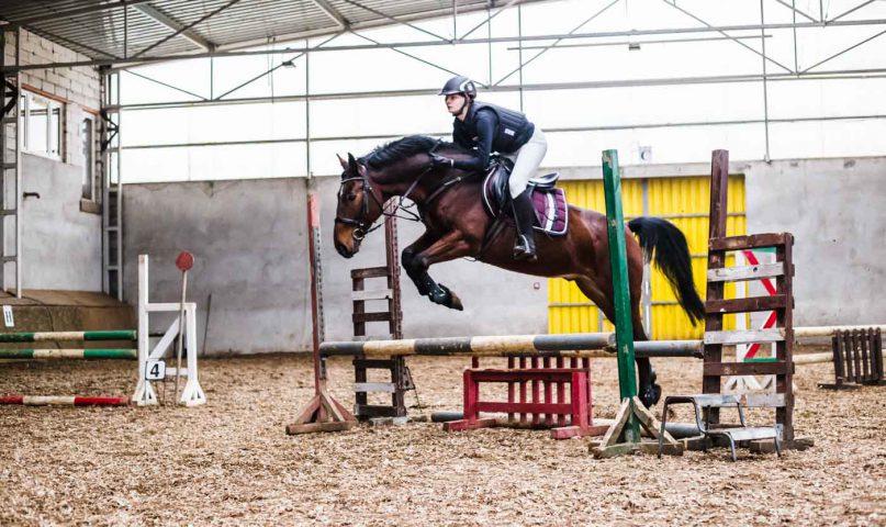 Konie Karmen Niekłonice